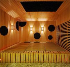 Sauna Infrared Ceramic Heaters for Sauna Room