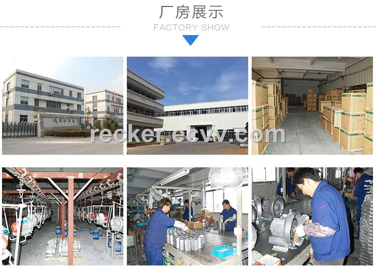 Wellreceived Vortex Air Pump Vacuum Pump TUV SUD Audited Manufacturer
