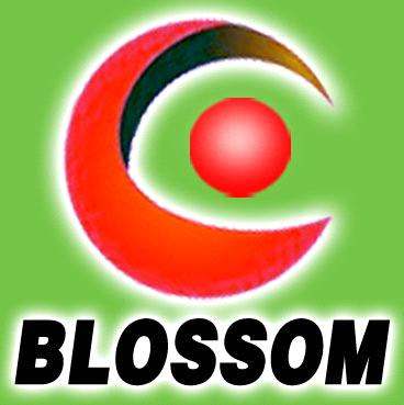 Guangzhou Blossom Stage Lighting Co., Ltd.