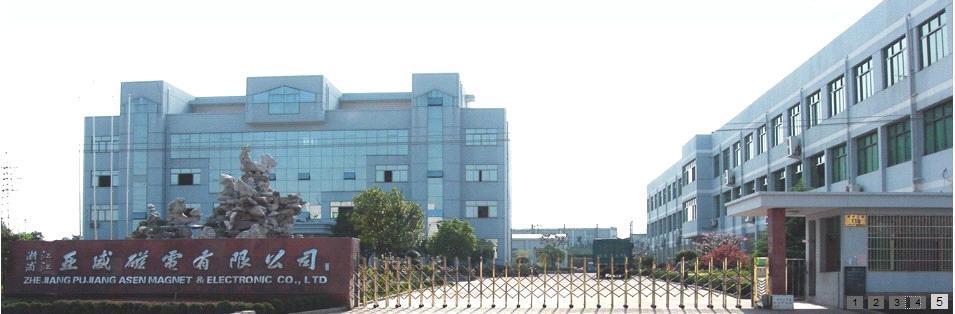 Zhejiang Pujiang Asen Magnet & Electronic Co., Ltd.