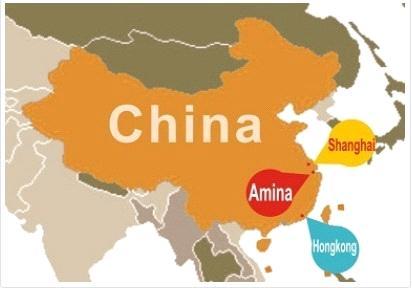Hangzhou Amina Tech Company Limited