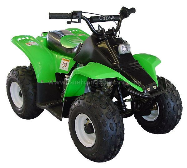 50cc atv with mini trailer images frompo. Black Bedroom Furniture Sets. Home Design Ideas