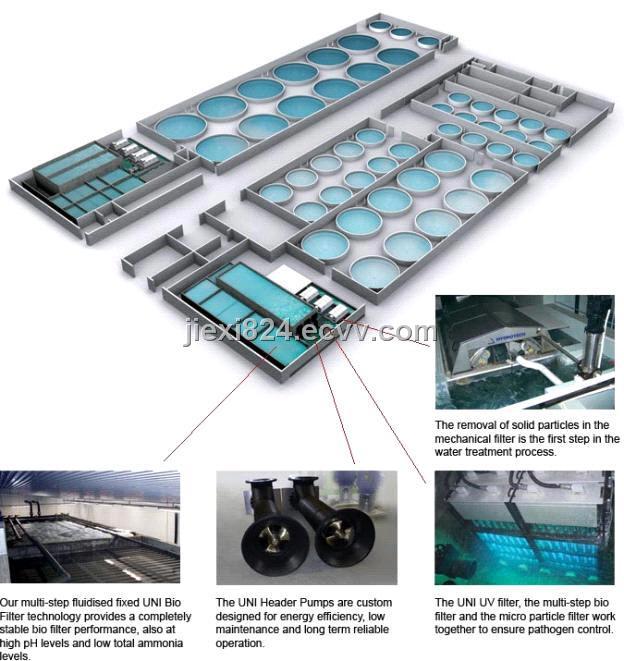 Recirculating Aquaculture System Purchasing Souring Agent