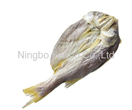 Dried Yellow Croaker