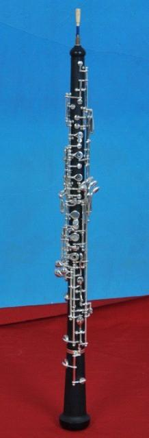 introduction to oboe and bassoon Sentences and phrases with the word oboe  oboe and bassoon  that zelenka was sent to study in italy is reflected in the italian elements of the introduction,.