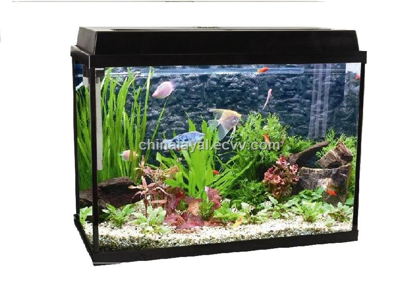 Glass fish tank purchasing souring agent for Acrylic vs glass fish tank