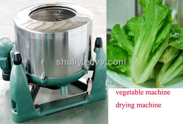 Vegetable Dryer Machine / Drying Machine4