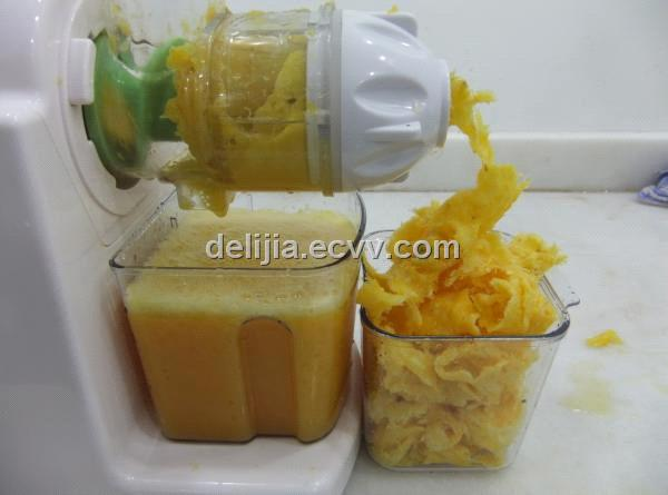 blendtec omega juicer reviews