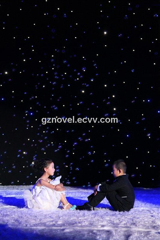 LED Star Cloth / LED Star Curtain / Wedding Decoration (S-0203 ...
