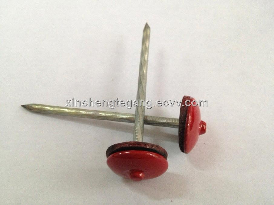 Umbrella Head Roofing Nails With Rubber Washer From China