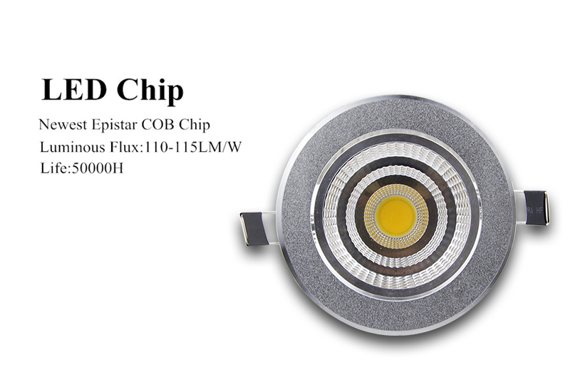 LED Downlight  (13)
