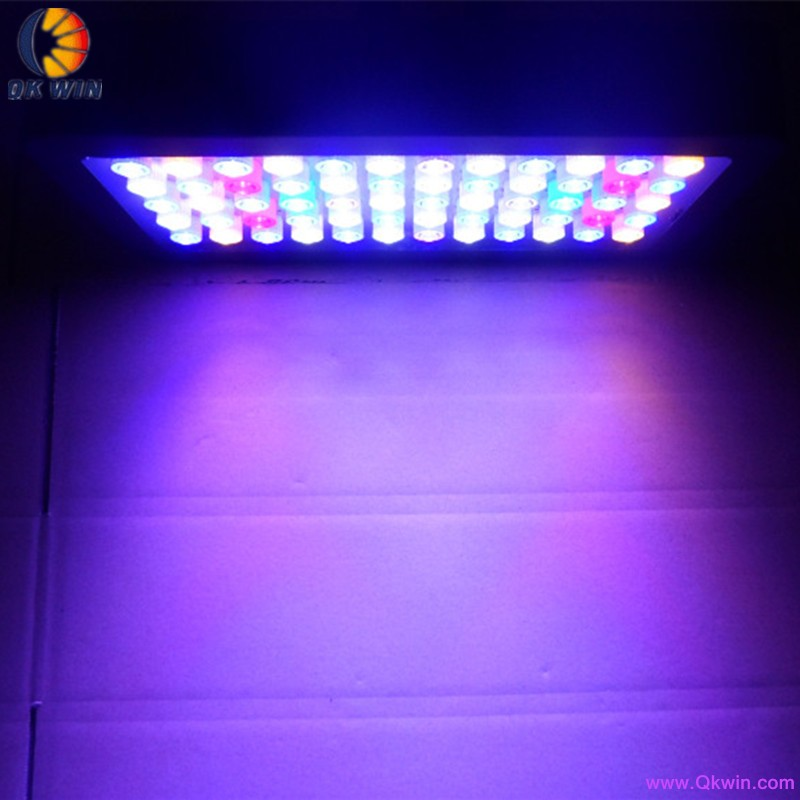 60x3W led aquarium light