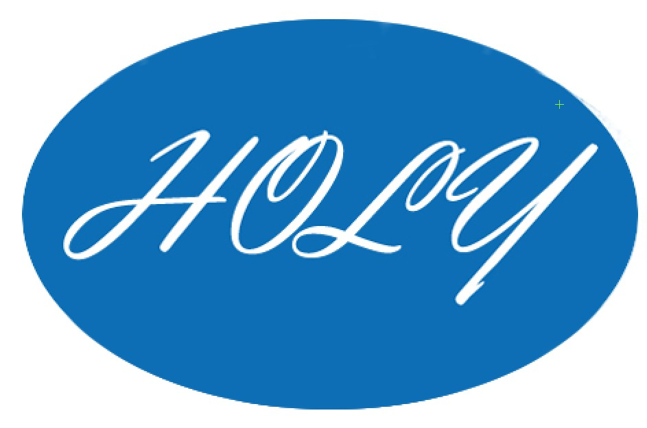 Holy Technology Co., Ltd.