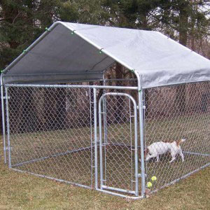 Lowes Dog Kennels And Runs Purchasing Souring Agent