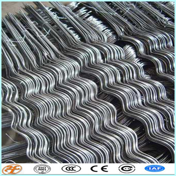 Stainless Steel Plant Stakes : Stainless steel plant support tomato spiral stakes