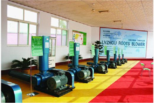 Zhangqiu Oasis Roots Blower Co., Ltd.