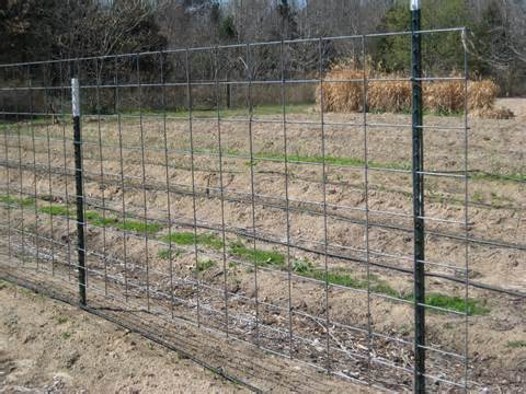 Solid Steel Pole For Cattle Fence Enclosure Purchasing