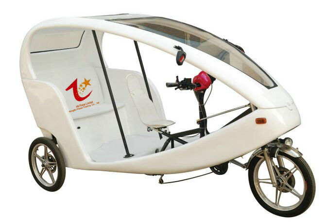 adult tricycle with passenger seat similar to german velo. Black Bedroom Furniture Sets. Home Design Ideas
