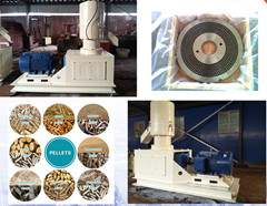 2016 China Best Selling Small Wood Pellet Mill Widely Used ...