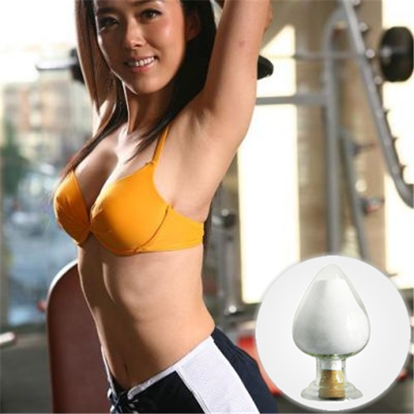 china steroid supplier