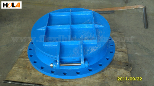 Cast Iron Flap Gate Valve Purchasing Souring Agent Ecvv