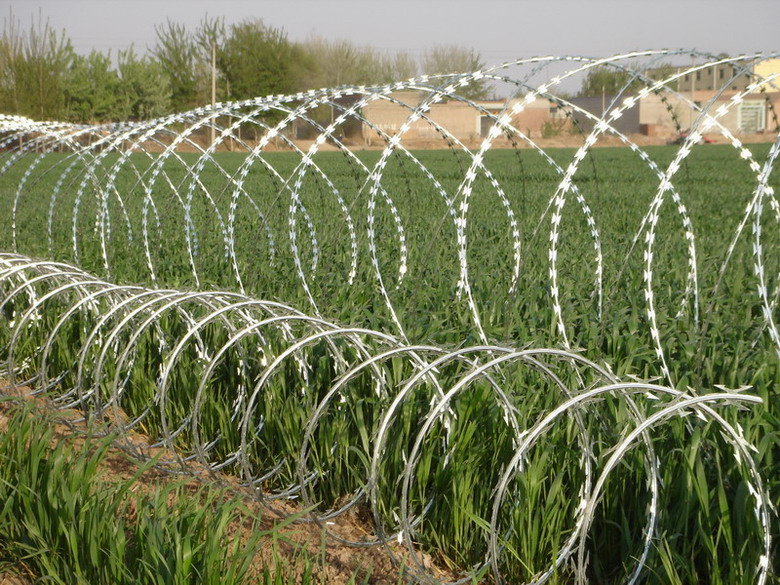 CROSSED TYPE OR SINGLE TYPE concertina razor wire mesh