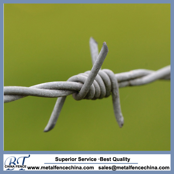 professional manufacture barbed wire for protection