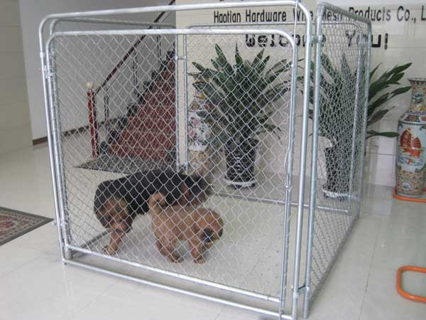 large dog kennel made in China