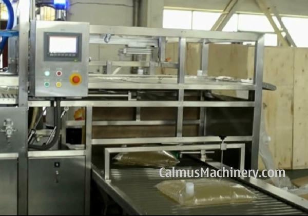 Fullyautomatic 5L 10L 20L BIB Filler Bag in Box Filling Machine