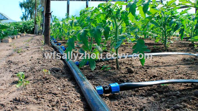 Dual Use Round Drip Irrigation PipeHDPE Pipe Machinery