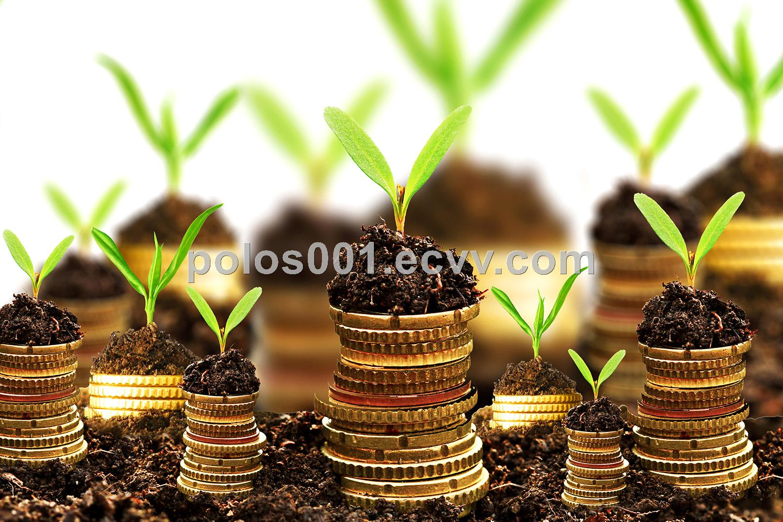 Business and Project LoansFinancing Available