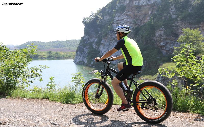 China electric bicycle Electric Bike TDE07