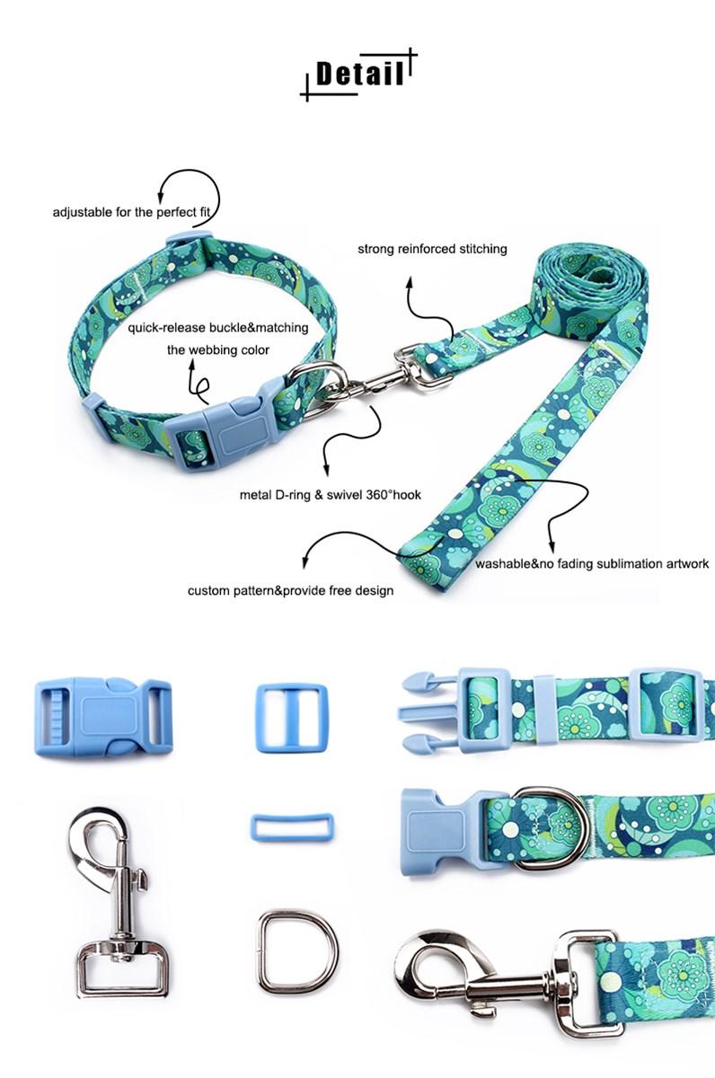 Custom dog collars with breakaway buckle