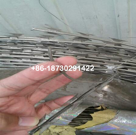 16 meter long Straight Line Concertina Razor Babred Wire used in Electricity Fence