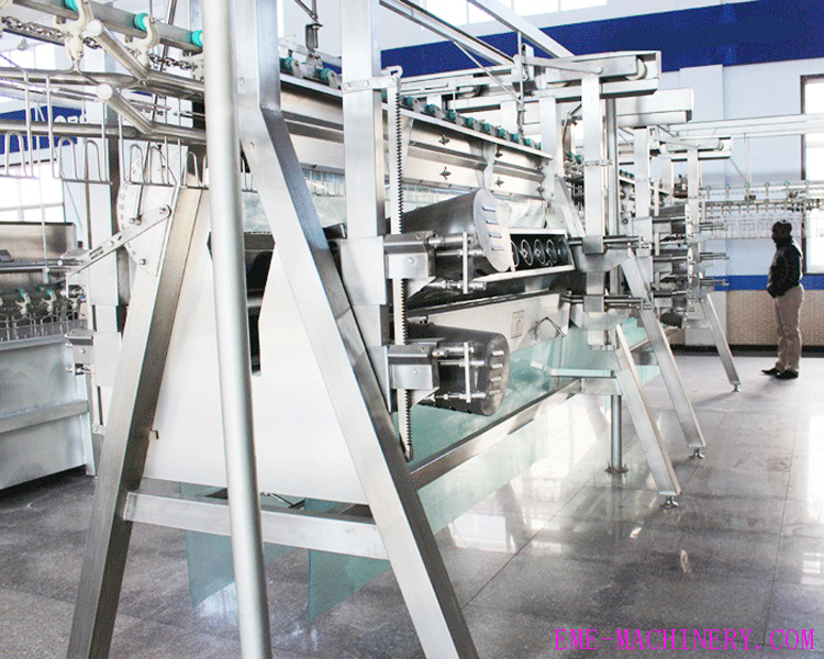 A Type Poultry Plucking Machine slaughterhouse machine