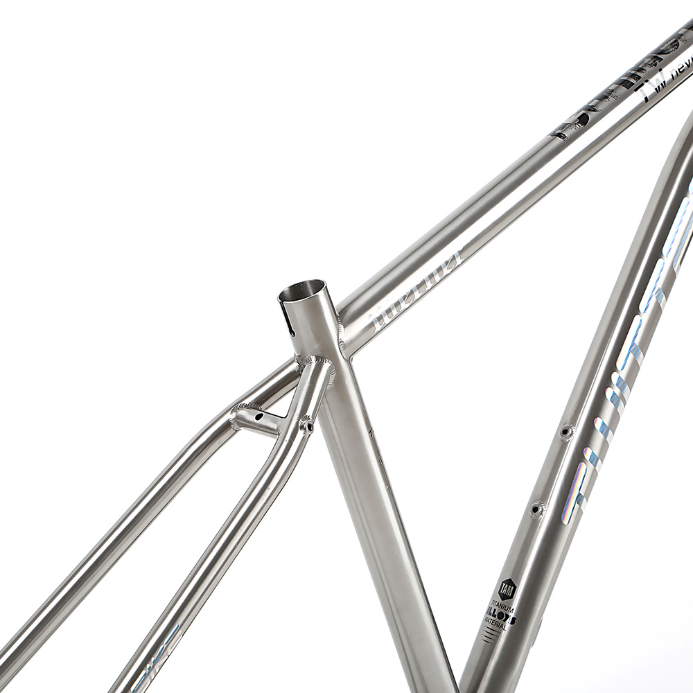 Direct Bicycle parts Supplier in China TWITTER WERNER 275 29 Titanium alloy mountain bike frame 155 17 19