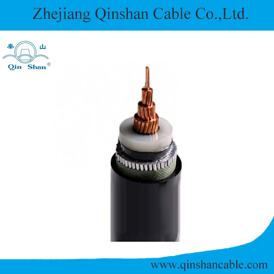 XLPE Insulated PVC Sheathed Electric Cable Qinshan Brand
