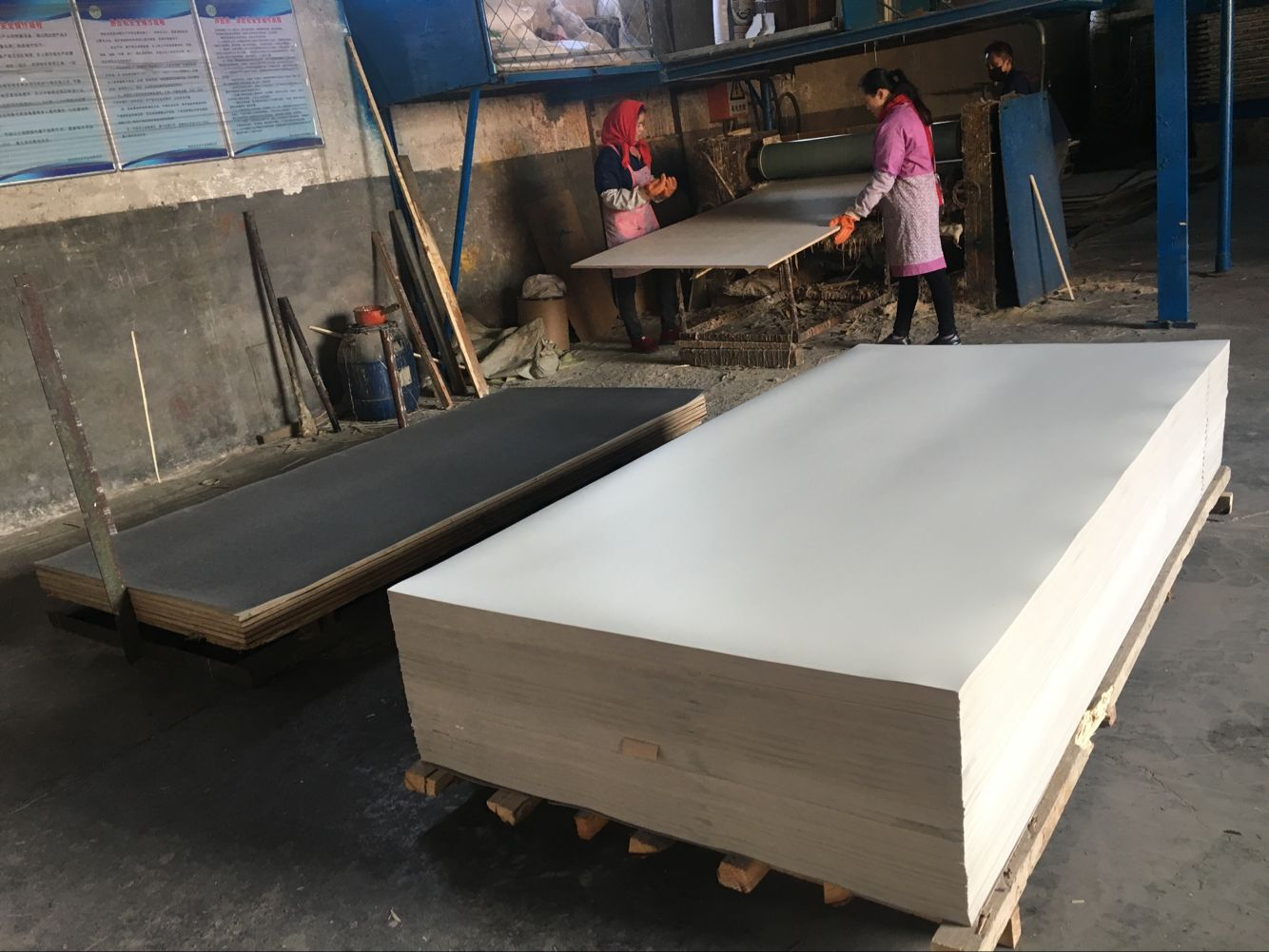2525 MM White Poplar Plywood