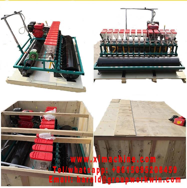 Onion Seederonion for saleonion planter machine for salehand onion planterautomatic onion