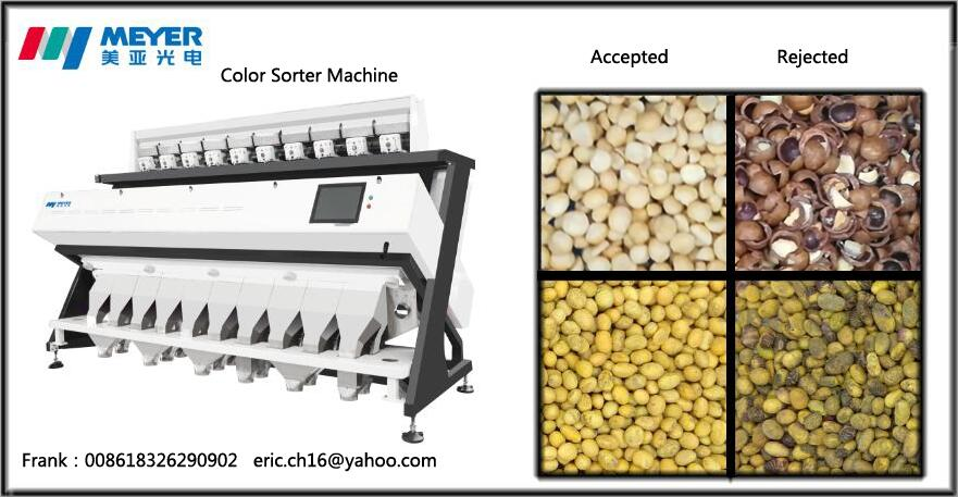 Macadamia Color Sorting Optical Sorter for Nuts Processing Machinery