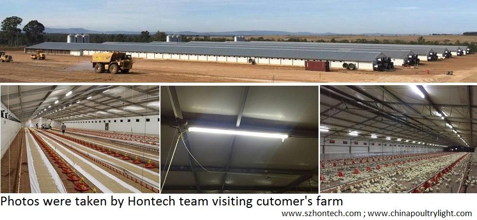 waterproof pig farming light tube waterproof tube light LED pig house lighting