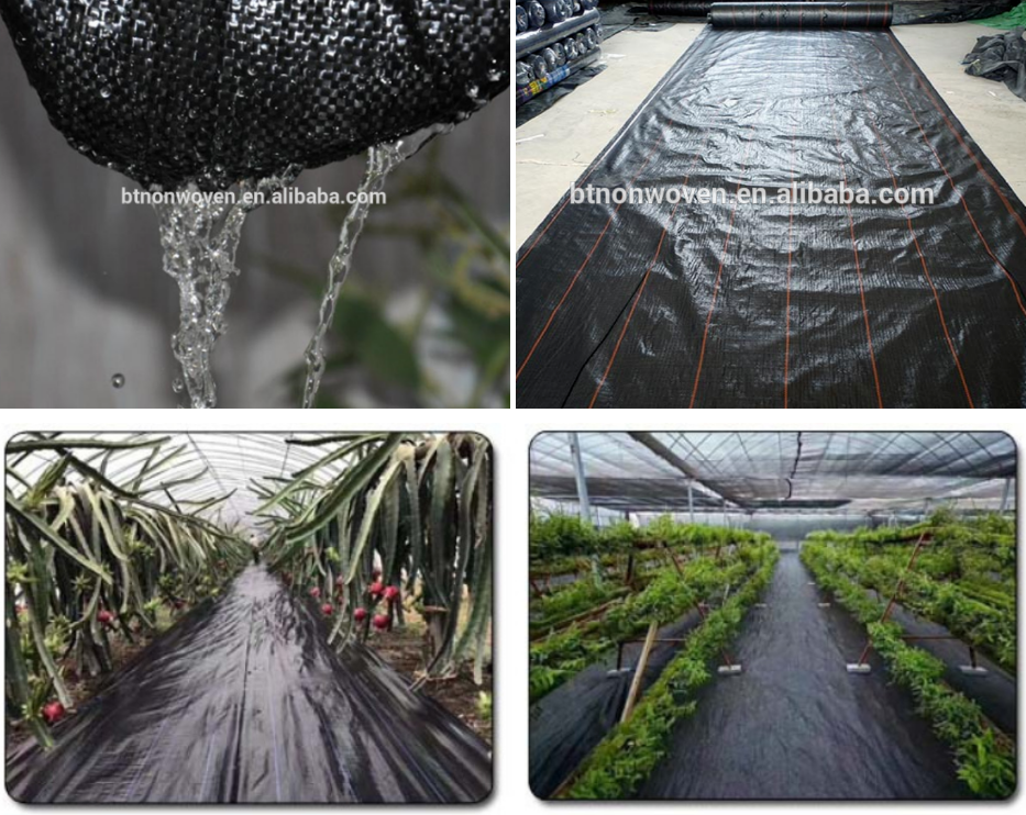 PP Ground Cover and Weed Barrier Fabrics Weed Mat in Strawberry Garden
