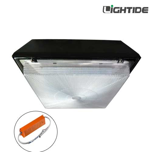 DLC Premium Emergency Backup LED Canopy Lights 90W 100277vac NiMH battery and 90180 minutes