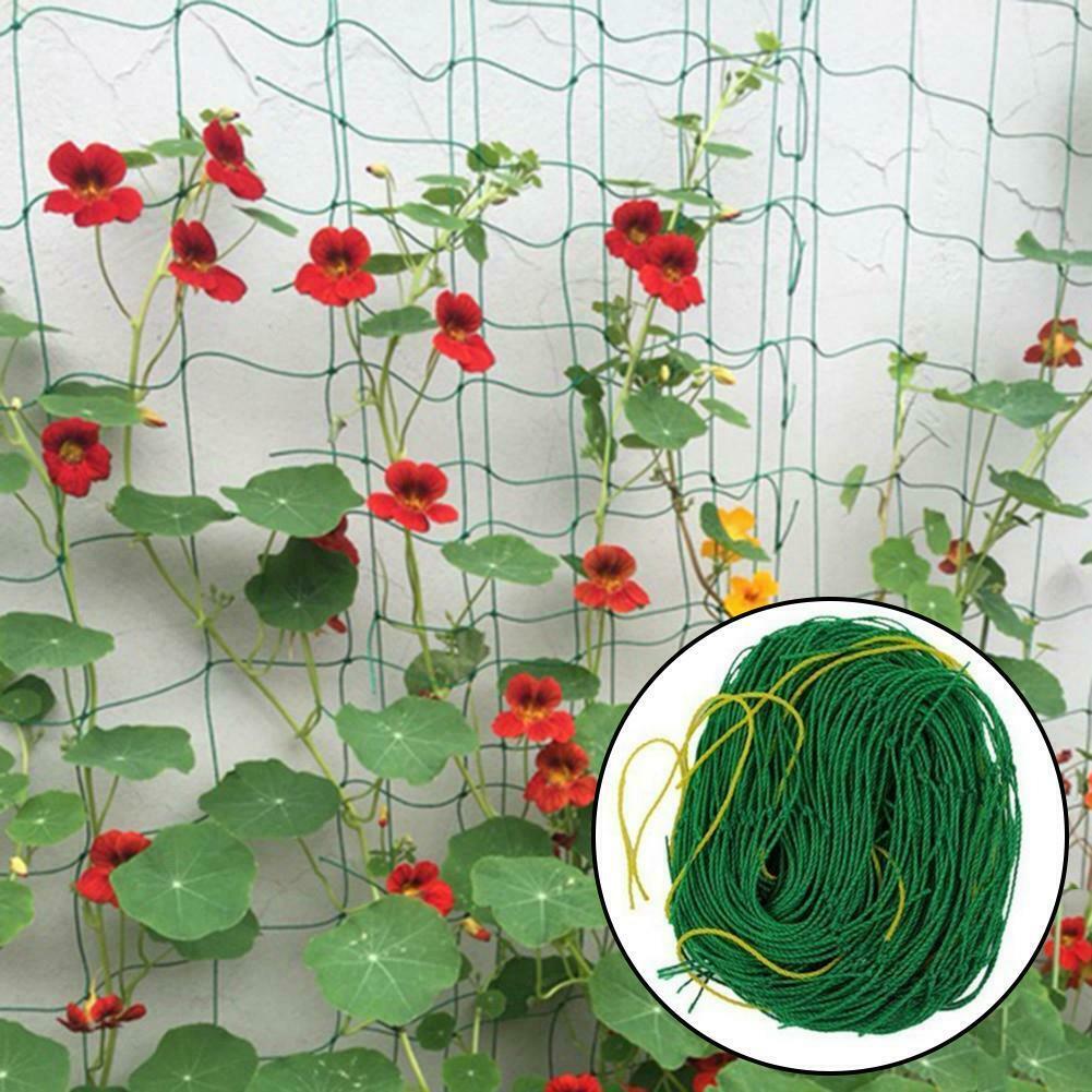 Nylon trellis nettinggarden nettingplant climbing nets