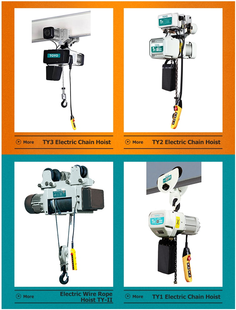 TOYO Factory Price High Quality Electric Chain Hoist Moving Type