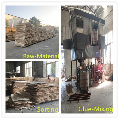 Free formaldehyde Poplar Plywood