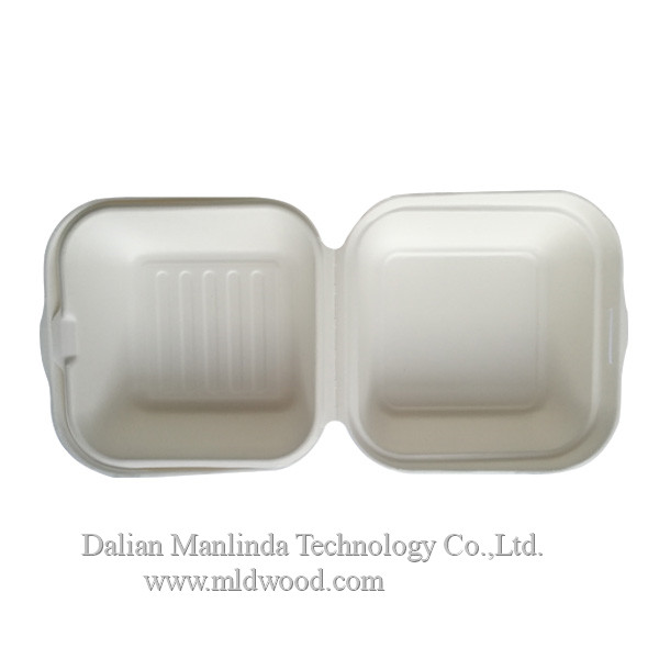 Disposable bagasse tableware lunch box