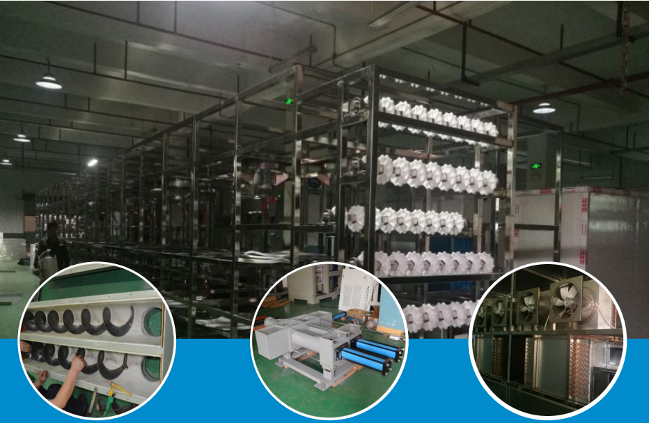 FullAutomatic Heat Pump fruit and vegetable Drying production line