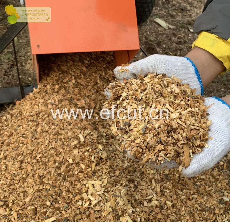 EFCUT Small Wood Chipper Shredder with gas Engine For Home Use