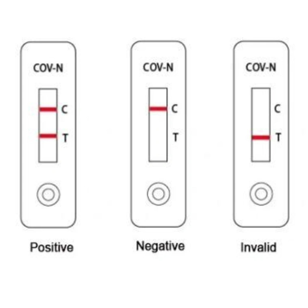 Covid19 SARSCov2 Igg Igm Antibody Test Kit Instant Result Within 15 Minutes1 Box of 20 Pieces